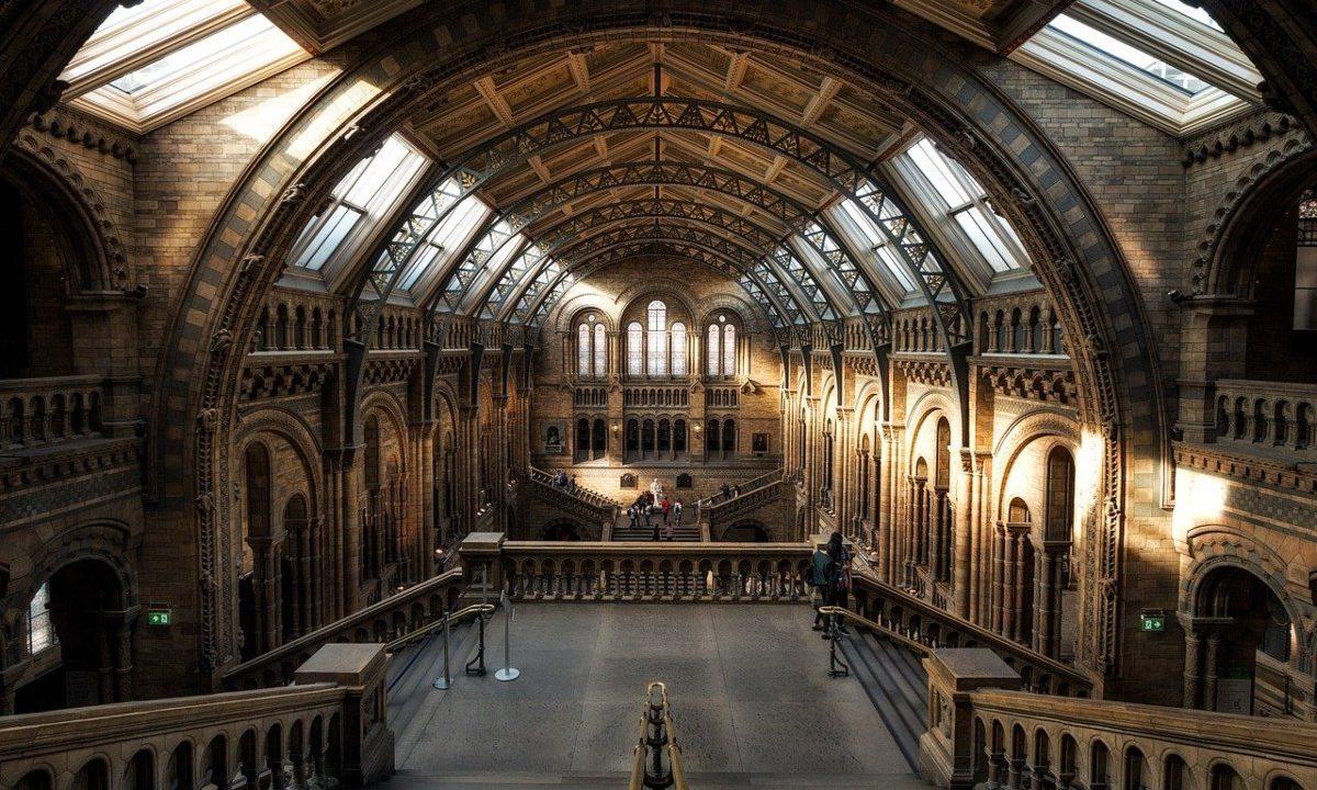 Wirtualne spacery po muzeach
